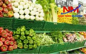 Rổ nhựa chữ nhật đựng thực phẩm rau củ quả trong siêu thị