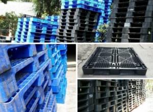 Mua pallet nhựa cũ tại Hà Nội chất lượng