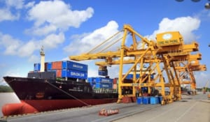 Pallet box 1200 x 1200 x 1250 mm hỗ trợ nâng hàng háo ở các cảng hàng xuất khẩu