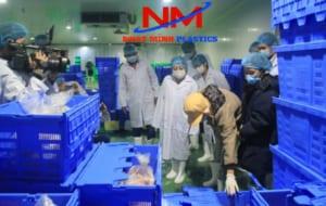 Rổ nhựa vuông công nghiệp chứa thực phẩm trong kho đông lạnh