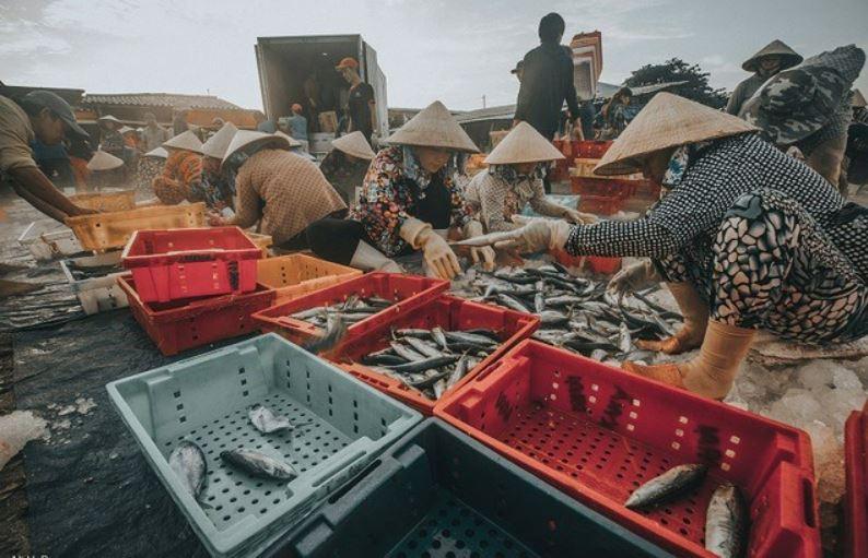 Kết nhựa thủy sản gắn bó mật thiết với người dân miền biển