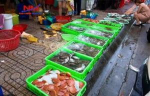 Khay nhựa công nghiệp đựng hải sản có thể sử dụng trong nhiều năm mà vẫn như mới