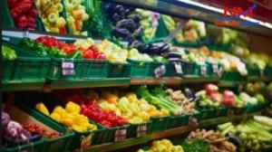 Khay nhựa chứa thực phẩm xanh